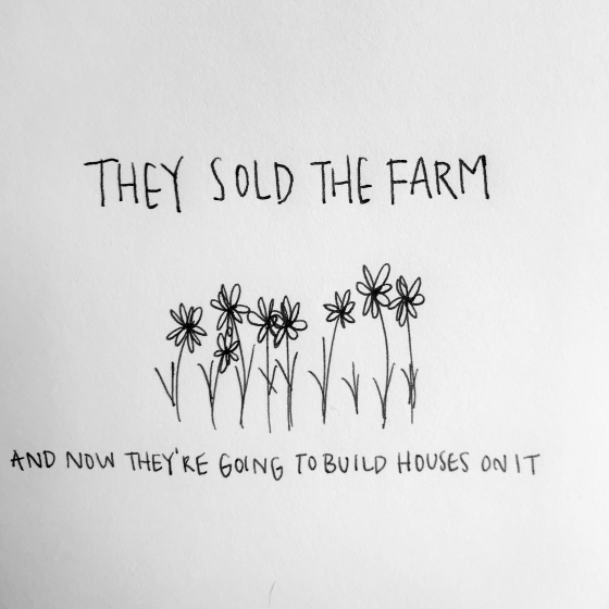 non epiphany stories and musings by jessie schaller they the farm an essay in brief